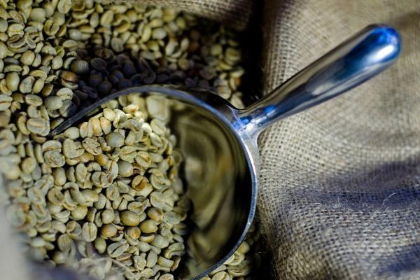 Povídání o kávě - původ kávy